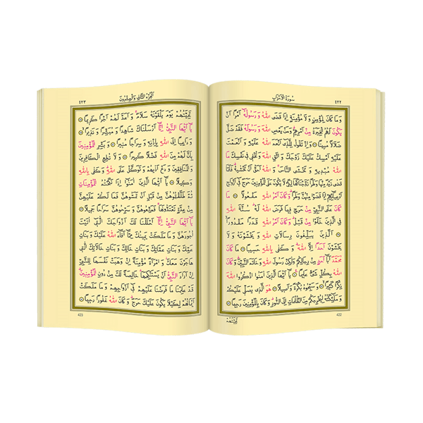 The Holy Quran - Plain Arabic - Rahle Boy - Computer Calligraphy - Hayrat Publications